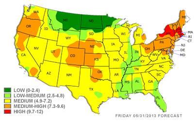 Pollen Peak Heat Wave Respiratory Challenges Mass Pollen